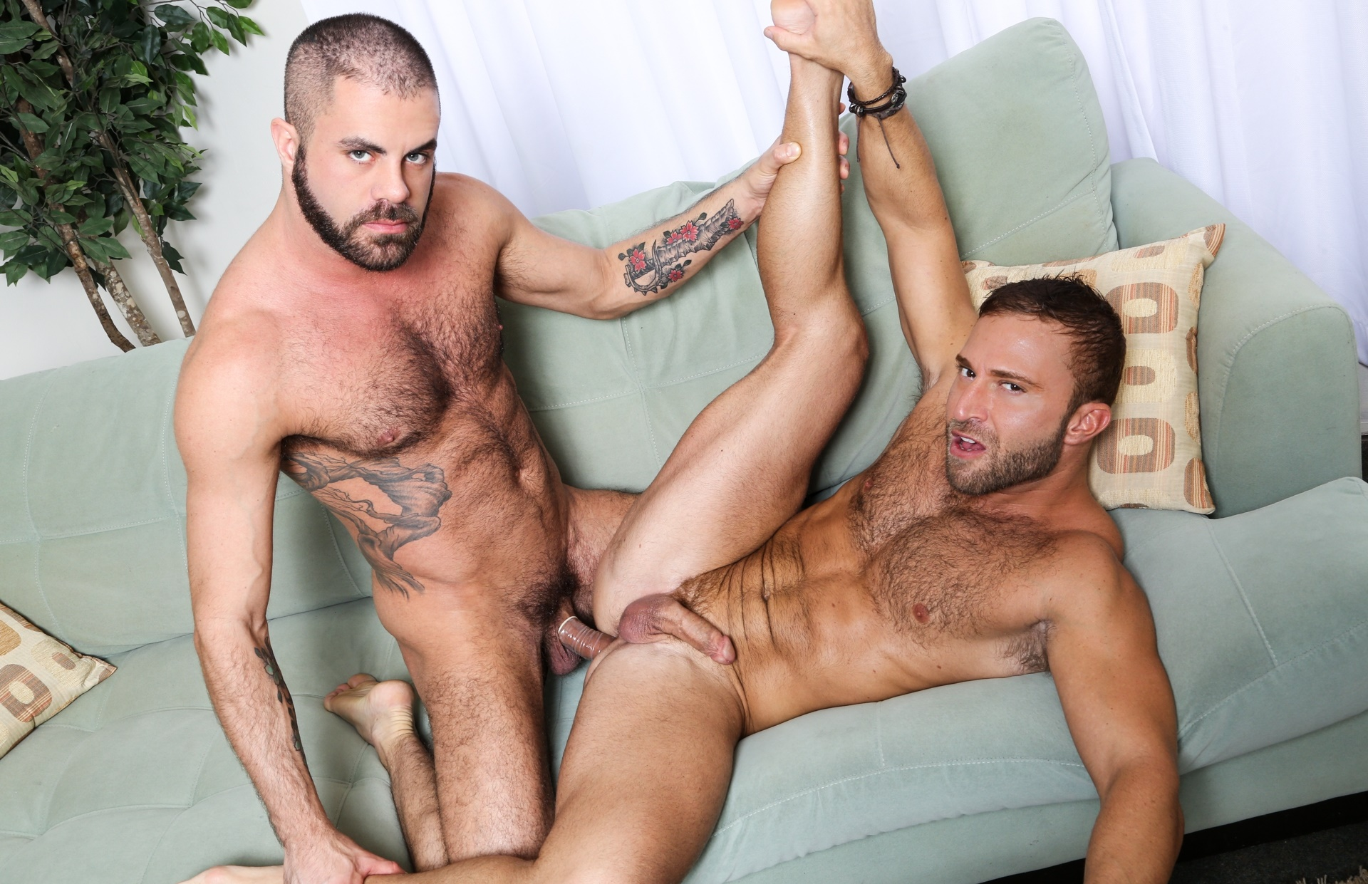 gaystips Gay centralniceapartment.com